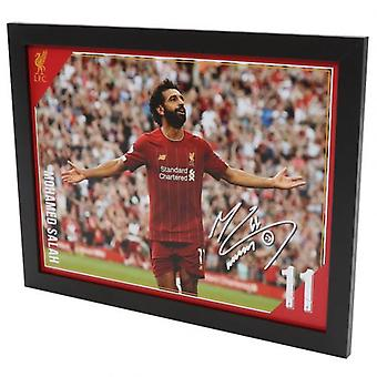 Liverpool Picture Salah 16 x 12