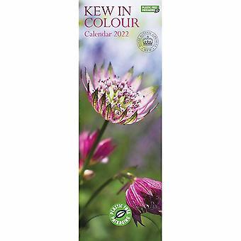 Otter House Royal Botanic Gardens Kew (pfp) Slim Kalender 2022
