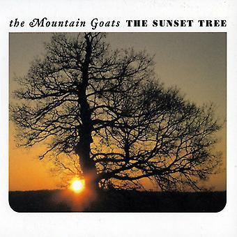 Mountain Goats - Sunset Tree [Vinyl] USA import