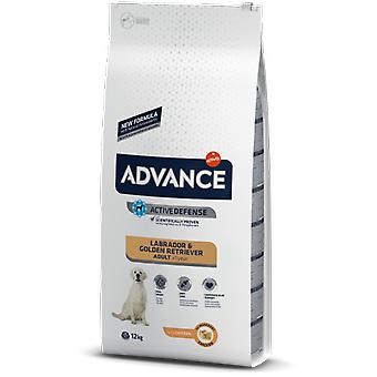 Advance Labrador (Dogs , Dog Food , Dry Food)