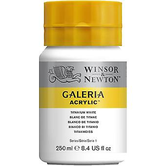 Winsor & Newton Galeria Acrylique Paint 250ml (Titanium White)