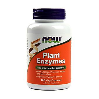 Vegetable Enzymes 120 capsules