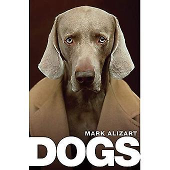 Hunder: En filosofisk guide til våre beste venner