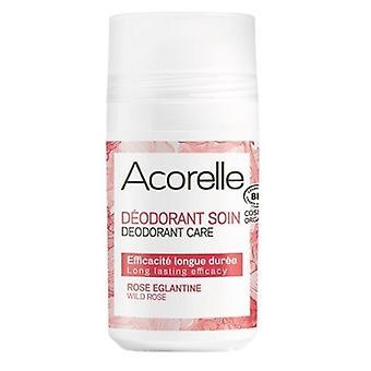 Rosa Silvestre Üzerinde Acorelle Desodorante Rulo 50 ml