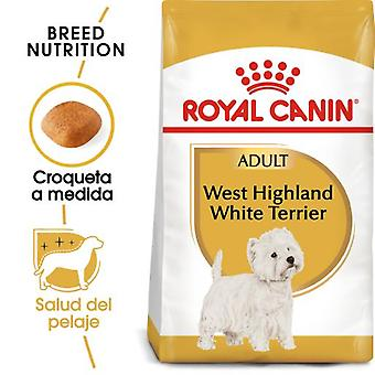 Royal Canin  West Highland Terrier Adult Pienso para Perro Adulto Westie