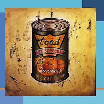 Toad the Wet Sprocket - In Light Syrup [CD] USA import