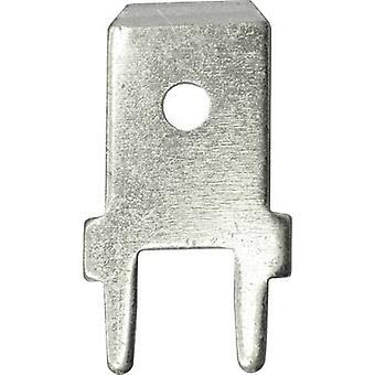 Vogt Verbindungstechnik 3866a.61 Klinge Connector Stecker Breite: 6,3 mm Stecker Stärke: 0,8 mm 180° nicht isoliert Metall 100 PC