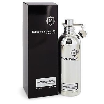 Montale patchouli leaves eau de parfum spray by montale 545622 100 ml