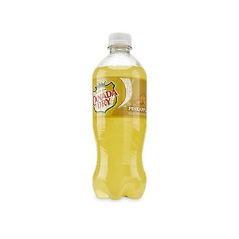 Canada Dry Us Pineapple-( 591 Ml X 1 Bottle )