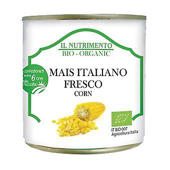 Färsk italiensk majs Ingen