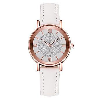 Luxury Quartz Stainless Steel Dial Bracelet Watch
