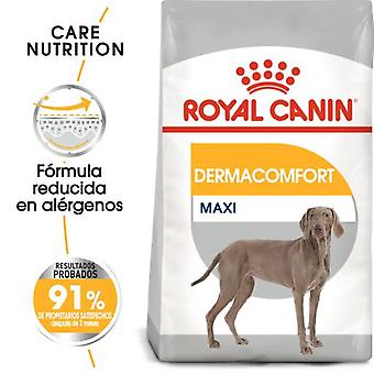 Royal Canin Maxi Dermacomfort dry  food for Large Adult Dogs with Sensitive Skin