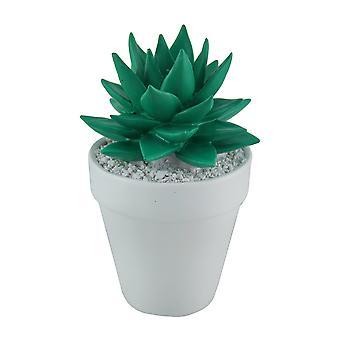 Ярко зеленый мини керамических сочные в белые круглые плантатора