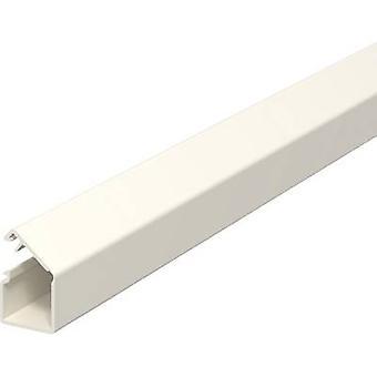 OBO Bettermann 6150284-2 Mini duct (L x W x H) 2000 x 12.5 x 12.5 mm 2 m Pure white
