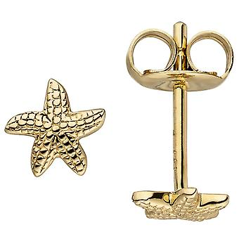 Gold Stud Earrings Starfish 585 gold yellow gold earrings gold earrings Gold ear studs