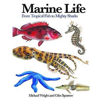 ジャイルズ スパロウ - 9 が巨大なサメに熱帯魚から - 海洋生物