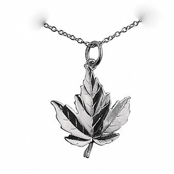 Silver 22x19mm solid Maple Leaf Pendant with a rolo Chain 24 inches