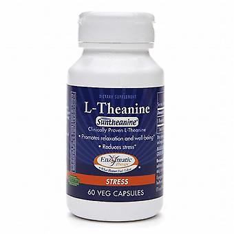 Enzymatic therapy l-theanine, vegetarian capsules, 60 ea
