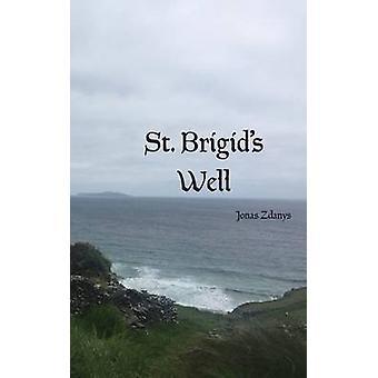 St. Brigids Well by Zdanys & Jonas