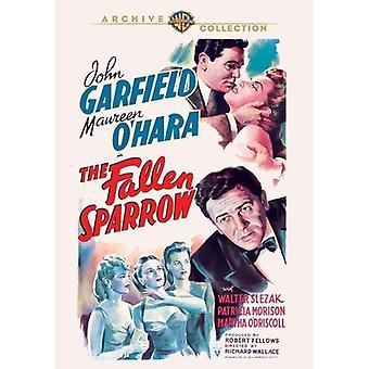 Fallen Sparrow [DVD] USA import