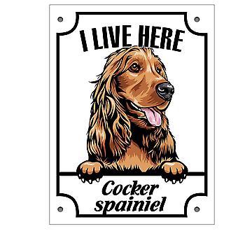 Plåtskylt Cocker spaniel Kikande hund skylt