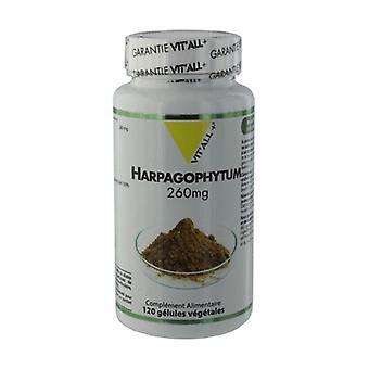 Harpagophytum (racine) 260mg 120 capsules végétales