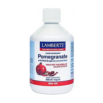 Pomegranate and Red Grape Concentrate 500 ml