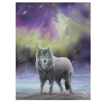 19x25cm Aurora Canvas Plaque by Anne Stokes