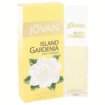 Jovan Island Gardenia Colonia Spray por Jovan 1.5 oz Colonia Spray
