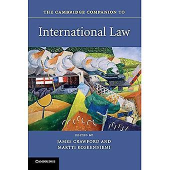 Cambridge Companion til internasjonal rett (Cambridge Companions to Law)