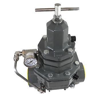 "Belgas P530016SDT00N30-P5300 2 ""ρυθμιστικό αντιπιεστικό νσμδ νιτριλίου 10-100 psi"