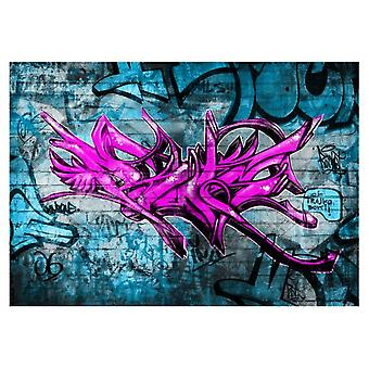 Artgeist Wallpaper Anonymous graffiti (Decoration , Wall murals , Wall murals standard)