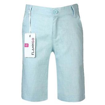 Boys Summer Linen Short in Mint