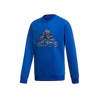 Adidas JR ID Crew ED6404 universal all year boy sweatshirts