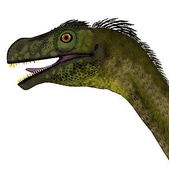 Primo piano di una testa di dinosauro Ornitholestes Ornitholestes era un piccolo dinosauro carnivoro vissuto nel periodo giurassico di Western Laurasia, che ora è la stampa del manifesto del Nord America