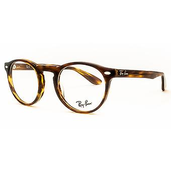 Ray-Ban RB5283 2144 Striped Havana Glasses