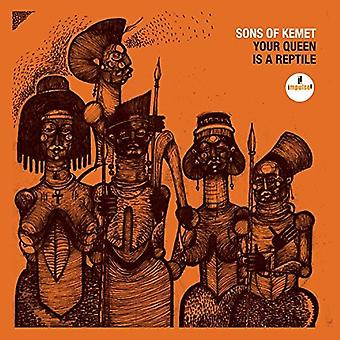 Sons of Kemet - Your Queen Is a Reptile [CD] USA import