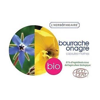 Evening primrose / borage organic oil 60 capsules of 500mg