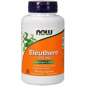 今食品エレウセロ, 500 mg, 100 キャップ