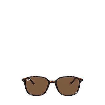 Ray-Ban RB2193 havana unisex sunglasses