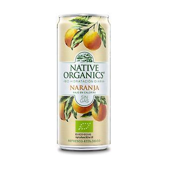 Native Organics Soft Drinks Isotonic Bio Orange without gas 1 unit