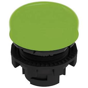 Pizzato Elettrica E21ILA410 Lampe Anlage grün