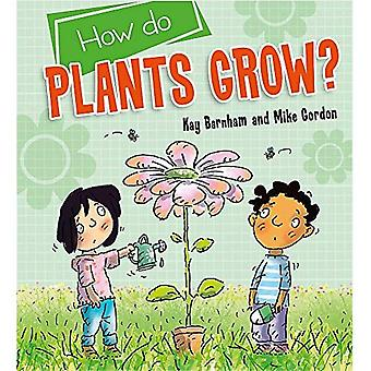 Wetenschap ontdekken: Hoe planten groeien? (Ontdekken Science)