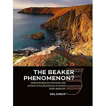 The Beaker Phenomenon?: Understanding the character and context of social practices in Ireland 2500-2000 BC
