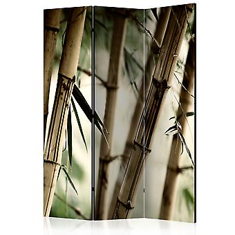 Room Divider - Fog and bamboo forest [Room Dividers]