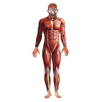 Férfi anatómia férfi jelmez ruha