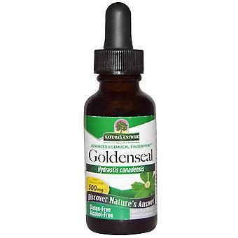 Goldenseal, Alcohol Free, 500 mg (30 ml) - Nature's Answer