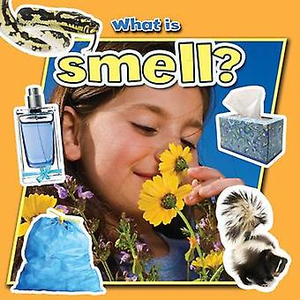What is Smell? by Molly Aloian - 9780778709992 Book