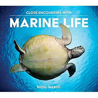 Close Encounters with Marine Life by Nigel Marsh - 9781925546187 Book