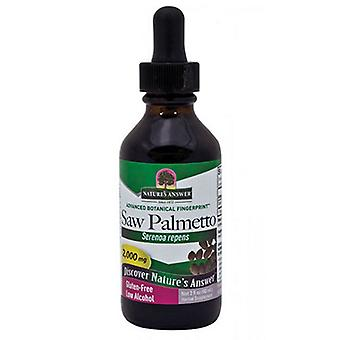 Nature's Answer Saw Palmetto Berries, Extract 2 FL Oz
